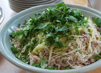 Rice vermicelli, green mango & chicken